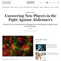 Uncovering New Players in the Fight Against Alzheimer's