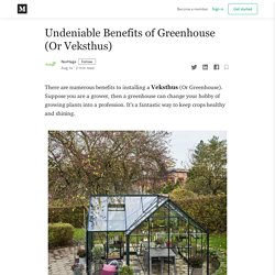 Undeniable Benefits of Greenhouse (Or Veksthus)