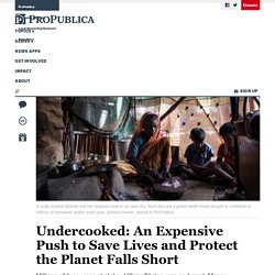 Undercooked: An Expensive Push to Save Lives and Protect…