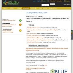 Undergraduate Resources