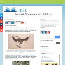 Undergraduates and the BHL