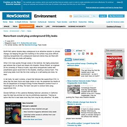 Nano-foam could plug underground CO2 leaks - environment - 11 June 2011