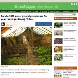 Build a $300 underground greenhouse for year-round gardening