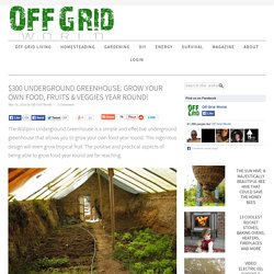 $300 Underground Greenhouse: Grow Your Own Food, Fruits & Veggies Year Round!