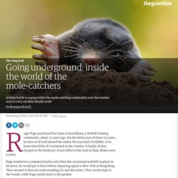 Going underground: inside the world of the mole-catchers