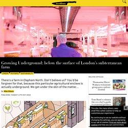 London's First Underground Farm Starts Production