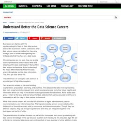 Understand Better the Data Science Careers