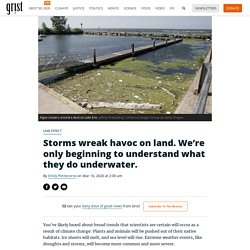 Storms wreak havoc on land. We're only beginning to understand what they do underwater.