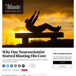 A New Understanding of How Movement Decreases Stress