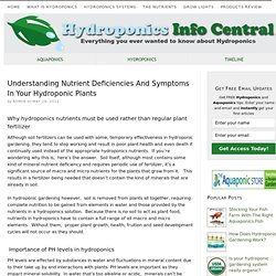 Understanding Nutrient Deficiencies And Symptoms In Your Hydroponic Plants
