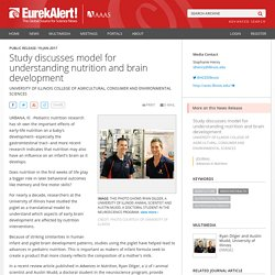 Study discusses model for understanding nutrition and brain development