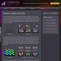 Understanding Digital Camera Sensors