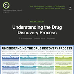 Understanding the Drug Discovery Process – Compound Interest