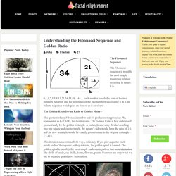 Understanding the Fibonacci Sequence and Golden Ratio – Fractal Enlightenment