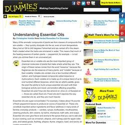 Understanding Essential Oils