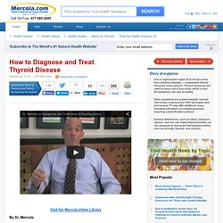Understanding How the Thyroid Gland Functions