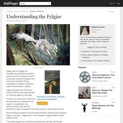 Understanding the Fylgjur
