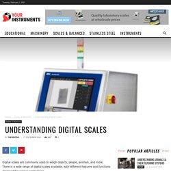Understanding Digital Scales