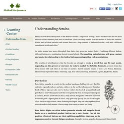 Understanding Marijuana Strains