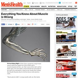 Understanding Your Muscles