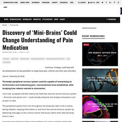 Discovery of 'Mini-Brains' Could Change Understanding of Pain Medication - Neuroscience News