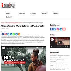 Understanding White Balance In Photography