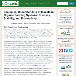 Ecological Understanding of Insects in Organic Farming Systems: Diversity, Stability, and Productivity
