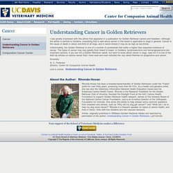 UC Davis School of Vet Med: Center for Companion Animal Health: Understanding Cancer in Golden Retrievers