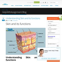 Understanding Skin and its functions- The HwA blog