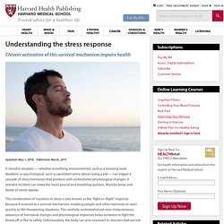 Understanding the stress response: Harvard Health Publishing