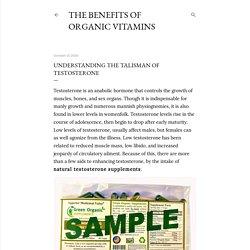 Understanding the Talisman of Testosterone