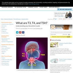 What are T3, T4, and TSH? - Understanding your thyroid test results