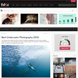 Best Underwater Photography 2010