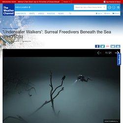 'Underwater Walkers'