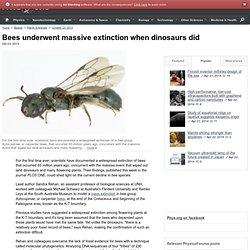 Bees underwent massive extinction when dinosaurs did