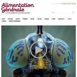 ALIMENTATION GENERALE via VIMEO 07/06/16 Une affaire qui fait mouche (concerne l'entomophagie)