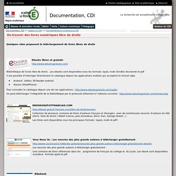 Une bibliothèque numérique au CDI