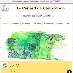 Journal en ligne_Le canard de Cantelande_Collège Cantelande _Cestas_33
