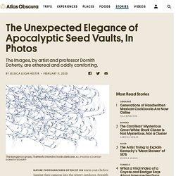 Dornith Doherty: Elegance of Apocalyptic Seed Vaults