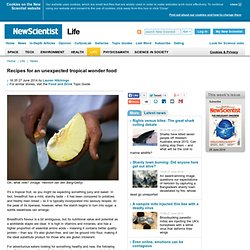 Recipes for an unexpected tropical wonder food - life - 27 June 2014