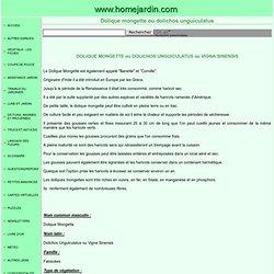 Dolique mongette ou dolichos unguiculatus ou vigna sinensis