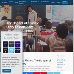 The Danger of a Single Story Lesson Plan: Unicorns vs Rhinos - Cultures of Dignity