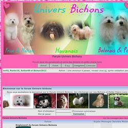 Univers Bichons