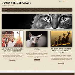 L'Univers des Chats