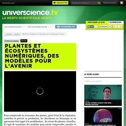 Plantes et écosystèmes numériques, des modèles pour l'avenir