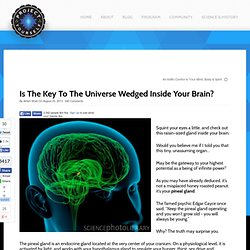 Is The Key To The Universe Wedged Inside Your Brain?