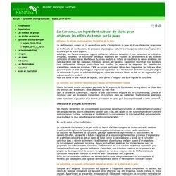 Université de Rennes 1 - Master biologie gestion - curcuma-antioxydant-Savina
