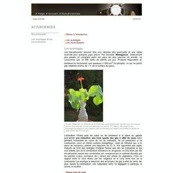Université Libre de Bruxelles - page 3/1