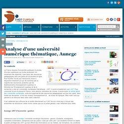 Analyse d'une université numérique thématique, Aunege