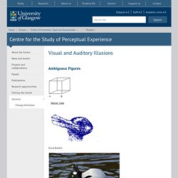 Centre for the Study of Perceptual Experience
